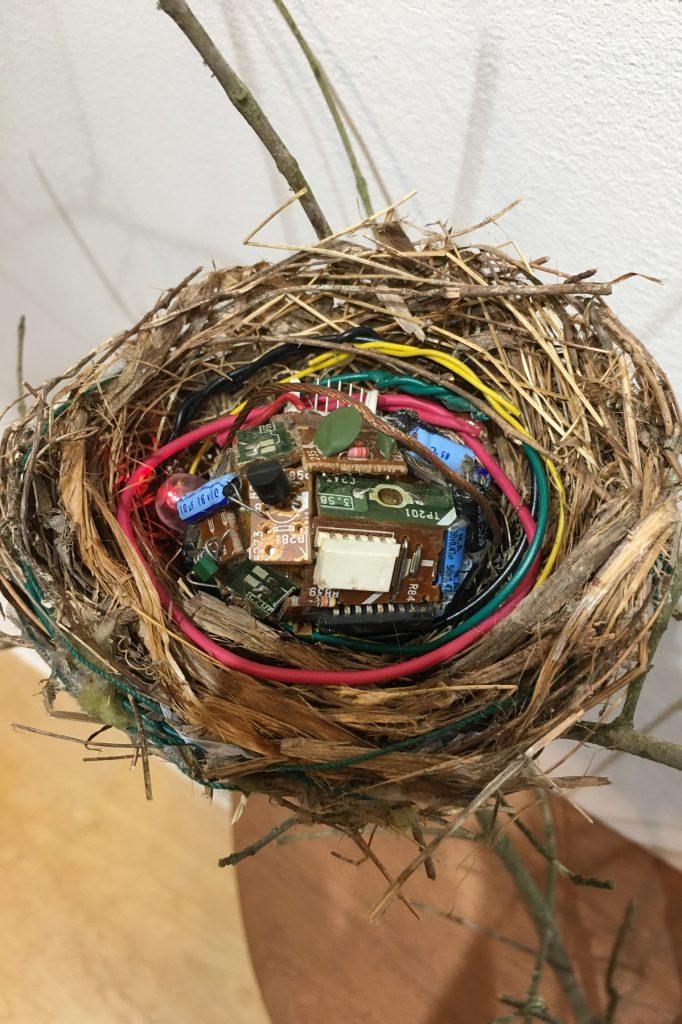 Digital Nest, Detail